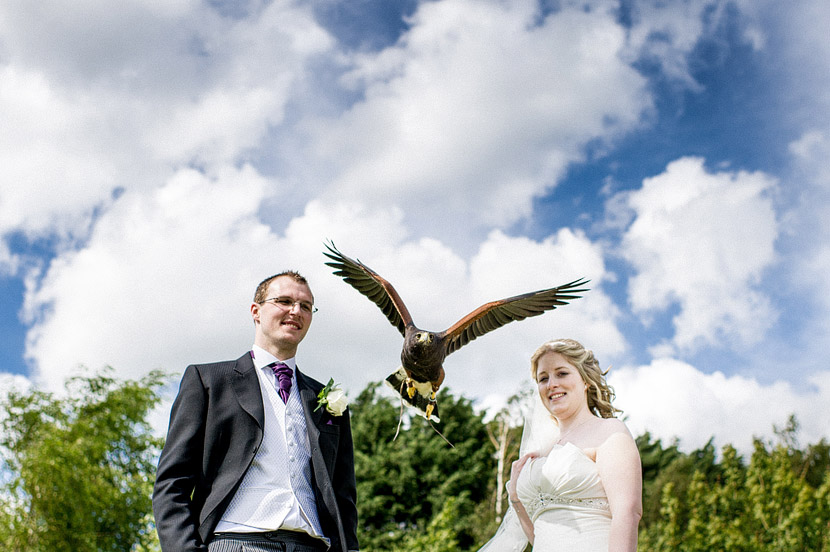 banham zoo wedding norfolk steve kerry